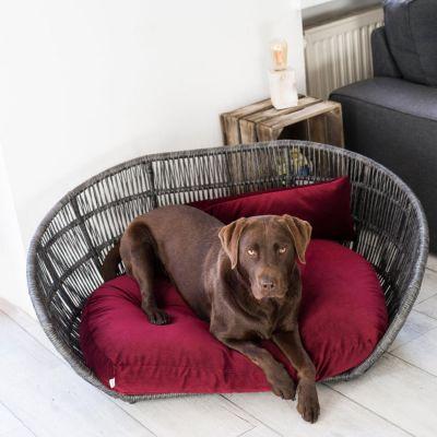 Laboni, Hundebett 'Prado', Indoor, Bezug: burgundy
