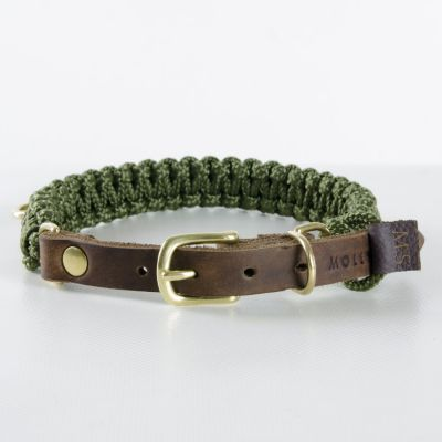 Molly and Stitch, Hundehalsband 'touch of leather', Farbe Military oliv, 6 Größen