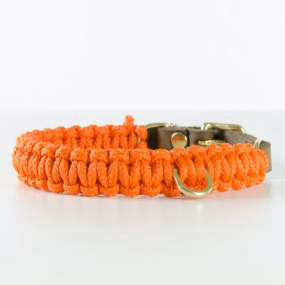 Molly and Stitch, Hundehalsband 'touch of leather', Farbe orange, 6 Größen