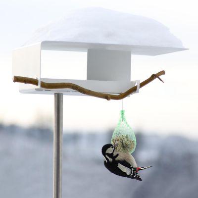 Opossum Design, Vogelhaus VH-1, 3 Ausführungen